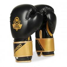 Boxerské rukavice BUSHIDO DBX-B-2v10